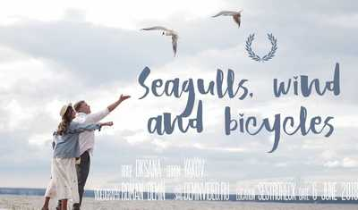 Seagulls, wind and bicycles [deminvideo.ru]